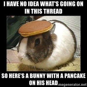 Bunny with Pancake on Head - I have no idea what's going on in this thread so here's a bunny with a pancake on his head
