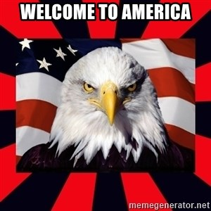 Bald Eagle - welcome to america