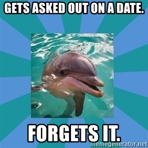 Dyscalculic Dolphin - GETS ASKED OUT ON A DATE. FORGETS IT.