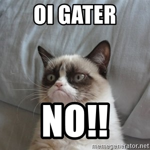moody cat - Oi Gater NO!!