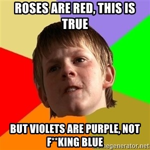 Angry School Boy - ROSES ARE RED, THIS IS TRUE BUT VIOLETS ARE PURPLE, NOT F**KING BLUE