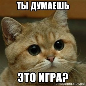 Do you think this is a motherfucking game? - Ты дуМаешь это игра?