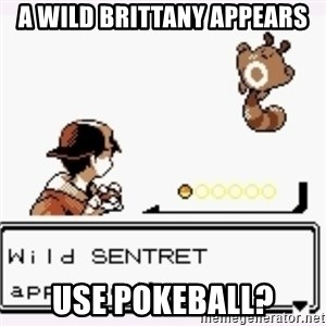 a wild pokemon appeared - A wild brittany appears use pokeball?