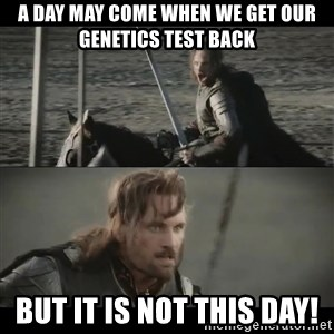 a day may come - A Day May Come When We Get our Genetics Test Back BUt It is not this day!