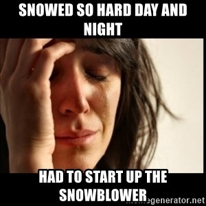 First World Problems - SNOWED SO HARD DAY AND NIGHT HAD TO START UP THE SNOWBLOWER