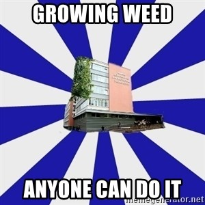 Tipichnuy MGLU - growing weed  anyone can do it