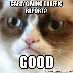 angry cat asshole - Carly giving traffic report? good