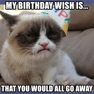 Birthday Grumpy Cat - My Birthday wish is... That you would all go away