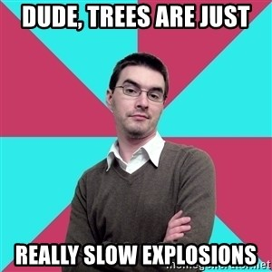 Privilege Denying Dude - Dude, trees are just really slow explosions