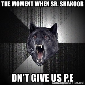 Insanity Wolf - the moment when sr. shakoor dn't give us p.e