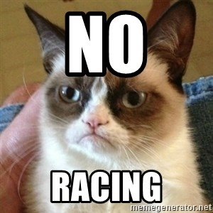 mean cat - No Racing