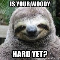 Sexual Sloth - is your woody hard yet?