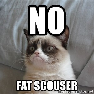 moody cat - No  Fat scouser