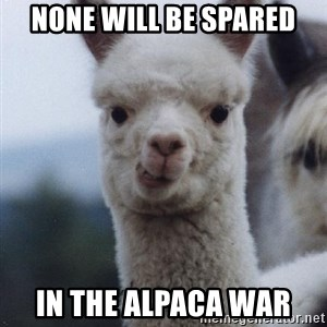 alpaca - NOnE Will be spared In the aLpaca waR
