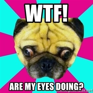 Perplexed Pug - WTF! Are my eyes doing?