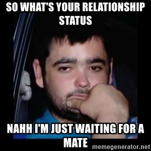 just waiting for a mate - SO WHAT'S YOUR RELATIONSHIP STATUS  NAHH I'M JUST WAITING FOR A MATE