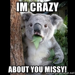 Koala can't believe it - Im Crazy about you missy!
