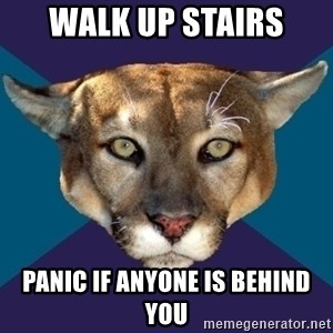 PTSD PUMA - walk up stairs panic if anyone is behind you