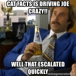 That escalated quickly-Ron Burgundy - Cat facts is Driving Joe crazy!! Well that escalated quickly