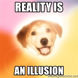 Holy Advice Dog - reality is an illusion