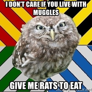 JEALOUS POTTEROMAN - i don't care if you live with muggles give me rats to eat