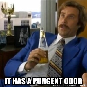 That escalated quickly-Ron Burgundy -  It has a Pungent Odor