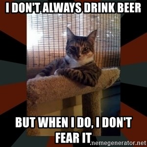 The Most Interesting Cat in the World - I don't always drink beer but when i do, i don't fear it