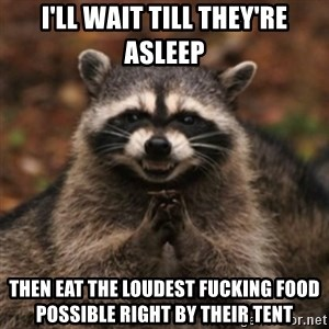 evil raccoon - I'll WAit till they're asleep then eat the loudest fucking food possible right by their tent