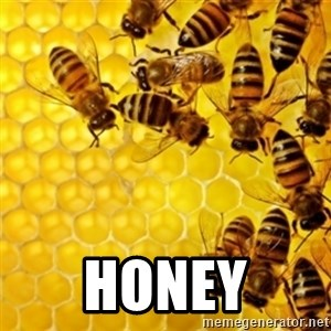 Honeybees -  HONEY
