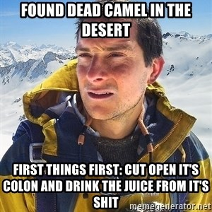 Bear Grylls Loneliness - found dead camel in the desert first things first: cut open it's colon and drink the juice from it's shit