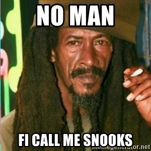 Rasta shake  - NO MAN FI CALL ME SNOOKS