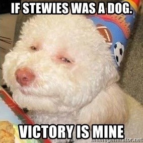 Troll dog - IF STEWIES WAS A DOG. VICTORY IS MINE