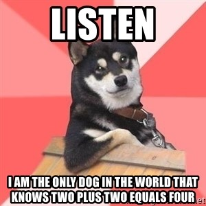 Cool Dog - listen i am the only dog in the world that knows two plus two equals four