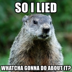grumpy groundhog - So I Lied Whatcha Gonna Do About it?