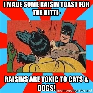 Batman Bitchslap - I made some raisin toast for the kitti- raisins are toxic to cats & dogs!