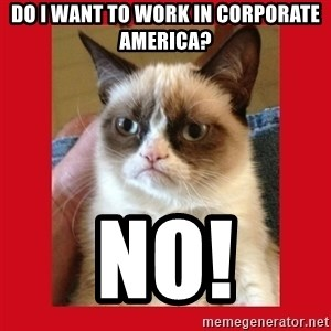No cat - DO I WANT TO WORK IN CORPORATE AMERICA? NO!