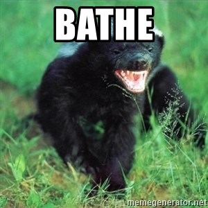 Honey Badger Actual - Bathe