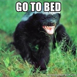 Honey Badger Actual - Go to bed