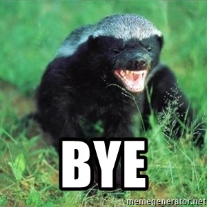 Honey Badger Actual -  Bye