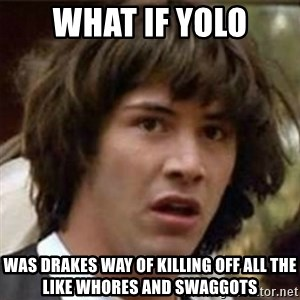 what if meme - What if yolo was drakes way of killing off all the like whores and swaggots
