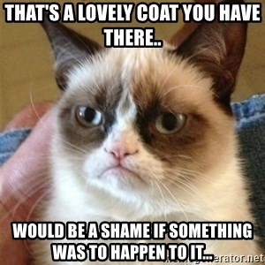Grumpy Cat  - THAT'S A LOVELY COAT YOU HAVE THERE.. WOULD BE A SHAME IF SOMETHING WAS TO HAPPEN TO IT...