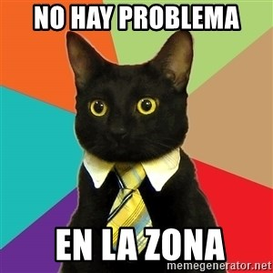 Business Cat - no hay problema   en la zona