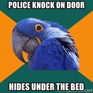Paranoid Parrot - Police knock on door Hides under the bed