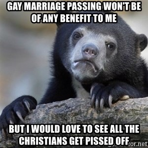 Confession Bear - GAy marriage passing won't be of any benefit to me but i would love to see all the christians get pissed off