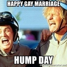 Dumb and Dumber - Happy Gay Marriage hump day