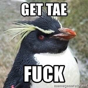 So What Penguin - Get tae Fuck