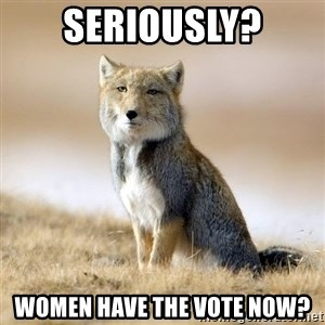 Disappointed Tibetan Fox - seriously? women have the vote now?