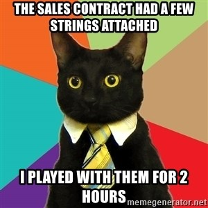 Business Cat - the sales contract had a few strings attached i played with them for 2 hours