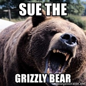 Bear week - Sue The  Grizzly Bear