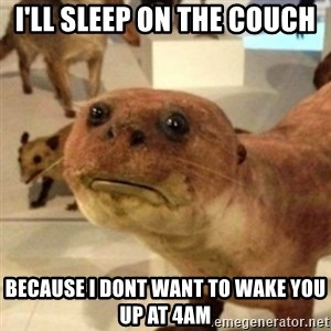 Sad Otter - I'll sleep on the couch because I dont want to wake you up at 4am
